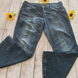Maurices Jeans Plus  Size 15/16 shrt